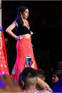 Bridal Royal Blue and Pink Lehenga
